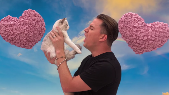 Channing Tatum hurled insults at a poor little kitten just to get you to see his movie.