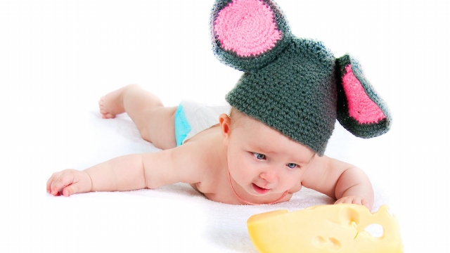 Throwing cheese at babies is the new viral internet trend