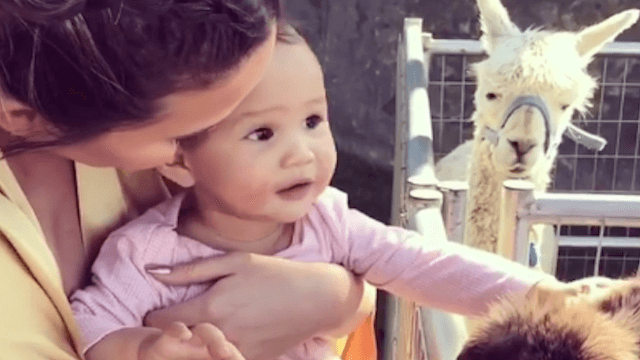 Baby Luna had a petting zoo party, but Chrissy Teigen and a turkey had the most fun.