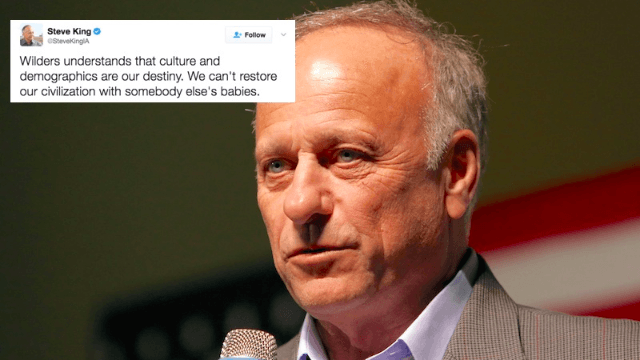 Congressman Steve King faces Twitter's wrath after posting straight-up white supremacist nonsense.