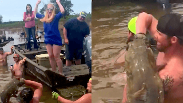 This couple used a live catfish in the world's weirdest gender reveal.