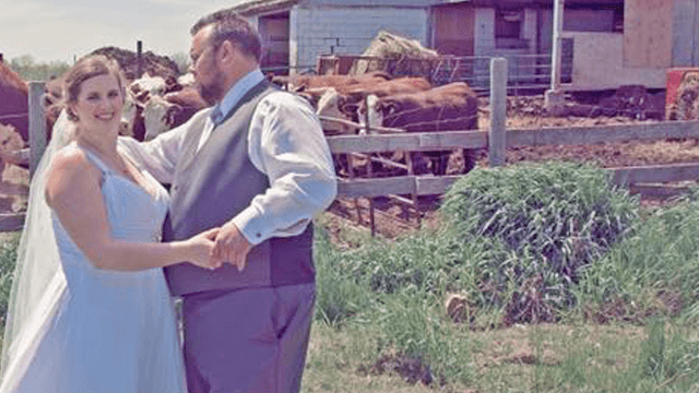 Two 'loving' cows photobombed a wedding shoot and completely upstaged the couple.