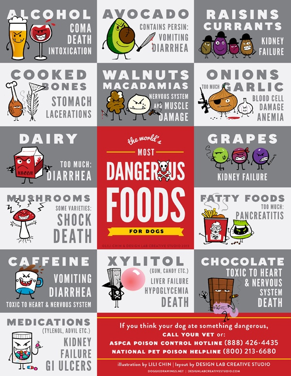 Who knew these foods were so mean? (TAP TO ZOOM) (via The Bark)