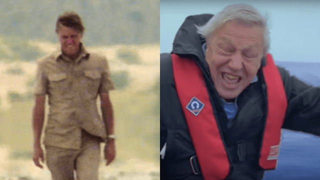 At 90, David Attenborough will finally be the subject of his own BBC documentary.