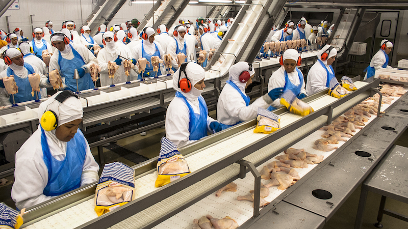New report confirms your chicken meat is handled by people in diapers.
