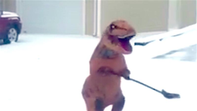 A dinosaur learned to shovel snow during the blizzard. Clever girl.