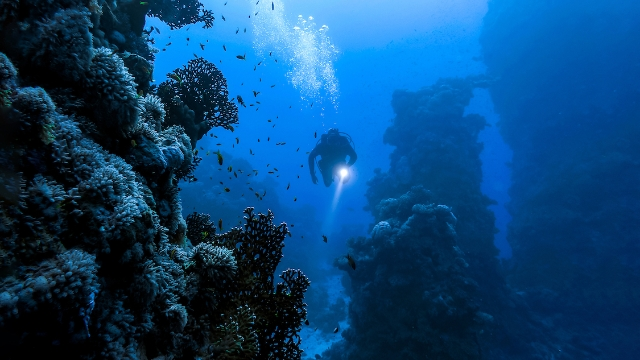 16 deep sea divers share their most frightening underwater experiences.