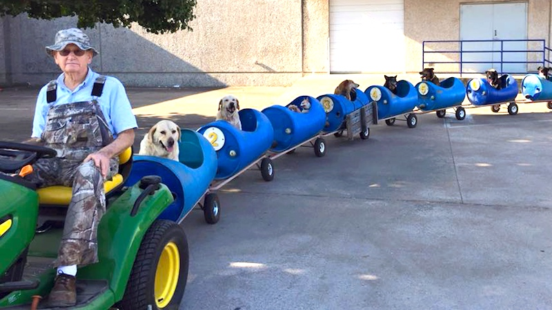 This awesome retiree built a train for all his adopted stray dogs.