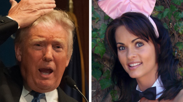 Ex-Playboy Playmate Alleges Trump System For Covering Up Affairs