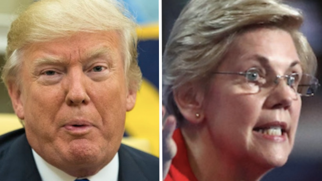 The internet came for Trump after he sh*t-posted an Elizabeth Warren meme.