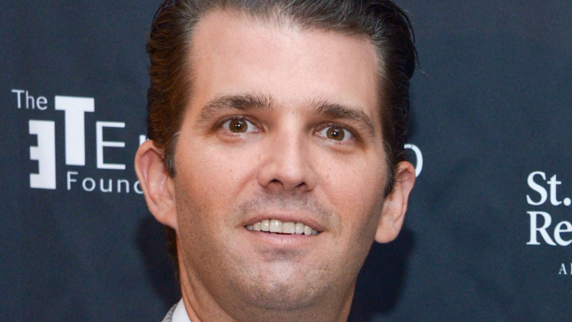 The 7 most outrageous things about Don Jr. revealed in the tell-all 'Fire and Fury.'