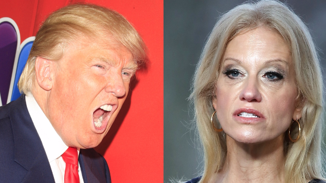 Trump escalates feud with Kellyanne Conway's husband: 'A stone cold LOSER'