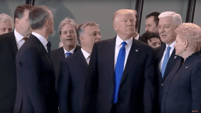 Enjoy this savage nature documentary version of Donald Trump's trip to Europe.