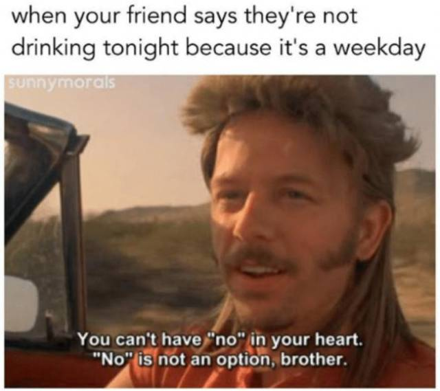 26 drinking memes for anyone who u0026 39 s getting drunk tonight