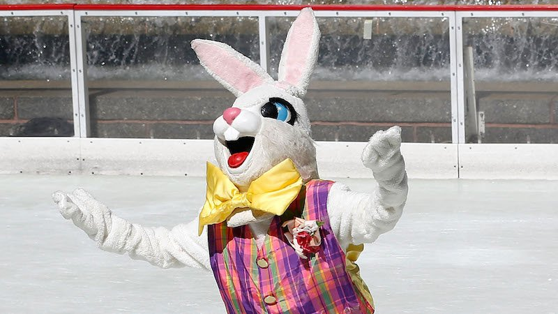 An Easter Bunny brawled with mall shoppers, which isn't very bunny-like but very New Jersey.