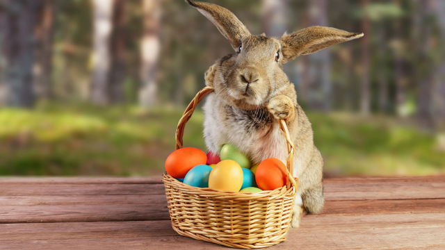 mom leaves stern note from the easter bunny explaining why her kids