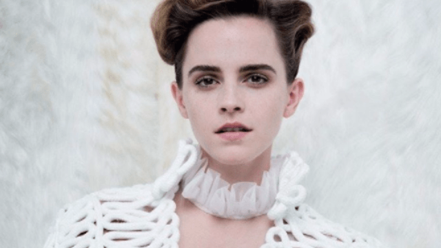 Emma Watson responds to trolls who think feminists can't have boobs.