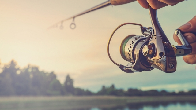 20 people who fish share the strangest things they've pulled out of the water.