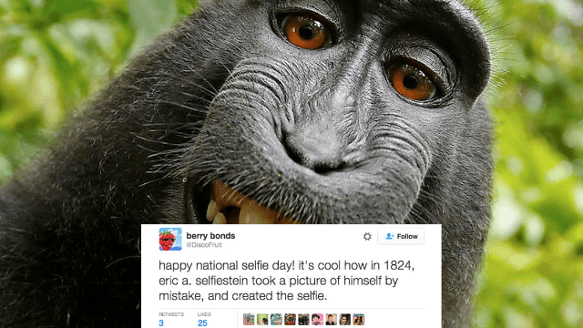 21 of the funniest tweets honoring the very important #NationalSelfieDay.