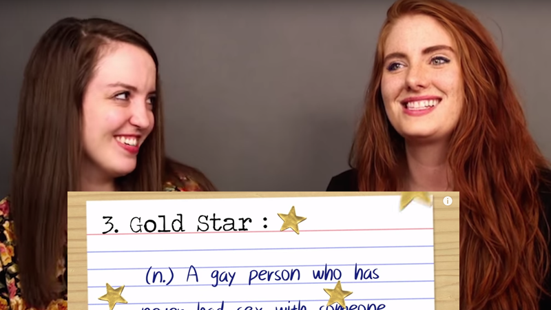 Ever wonder what these gay slang terms mean? Here's your answer, ya fruit fly.