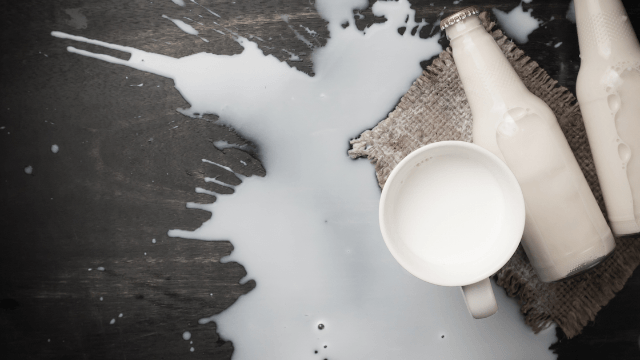 Woman doesn't have to cry over spilled milk after kind grandma saves the day.