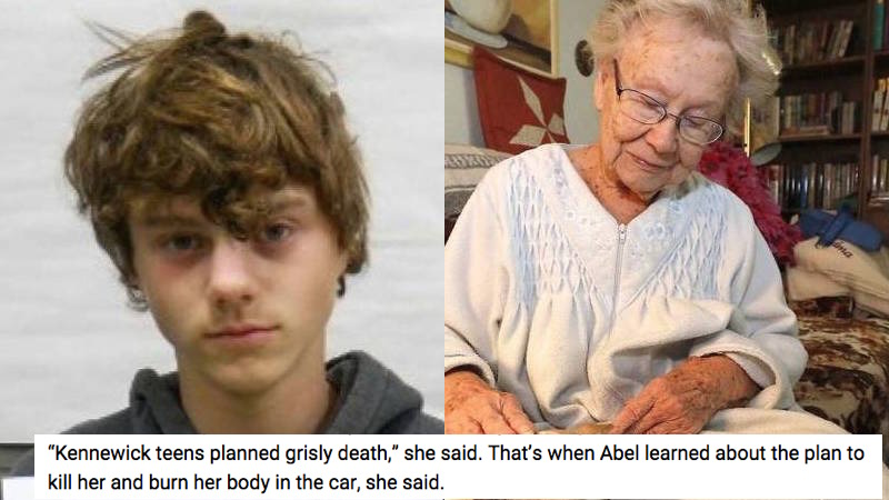 World's worst 16-year-old kidnapped and planned to kill his great-grandma.