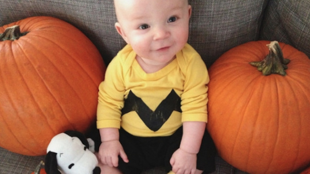 17 babies in Halloween costumes that will make you want a little ...