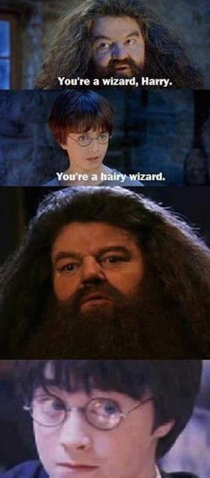 harry potter memes hairy wizard 38jofu 35 magical memes to celebrate harry potter's 20th anniversary