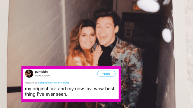 Harry Styles and Shania Twain finally met. Twitter demands they collaborate ASAP.