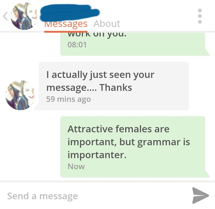 The funniest instances of grammar being corrected in Tinder conversations.