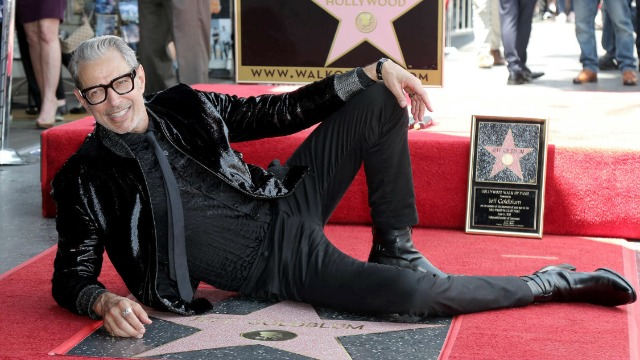 Jeff Goldblum lookalike fistfights neighborhood cat-caller in viral video.