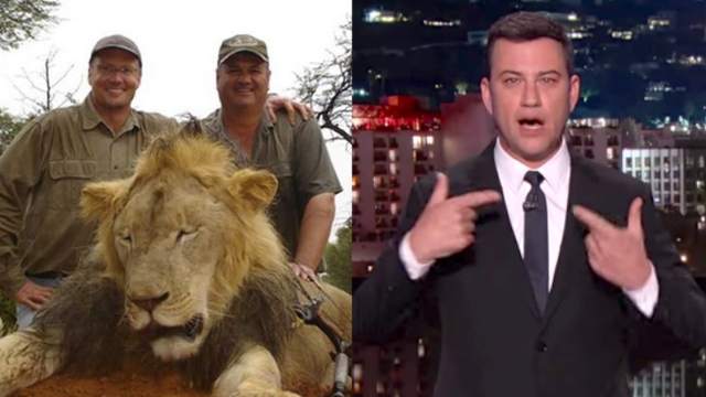 Jimmy Kimmel has ideas for what to do about Cecil the lion besides cry, though he also cries.