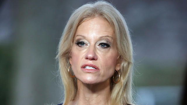 Kellyanne Conway accidentally burned Trump and is getting gleefully shredded.