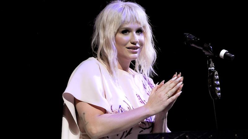 Kesha sent Instagram on a mission to find her stolen jacket.