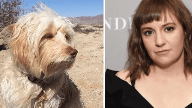 Lena Dunham defends giving up Lamby, her beloved rescue dog.