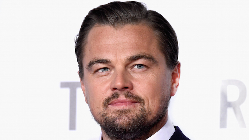 Leonardo DiCaprio's ideal woman has been identified and she can't rent a car.