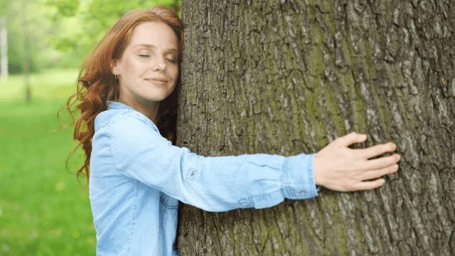 Image result for tree hugging