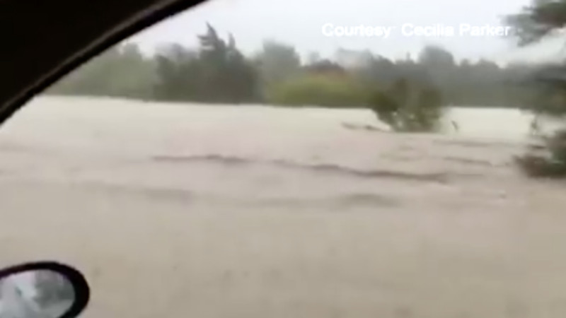Man swept away by a flood in his car climbs a tree to safety, then calls the news from the tree.