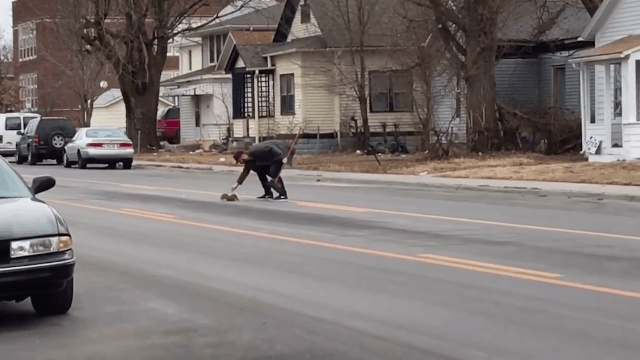 Good Samaritan comes to the aid of a squirrel with a cereal bowl stuck on its head.