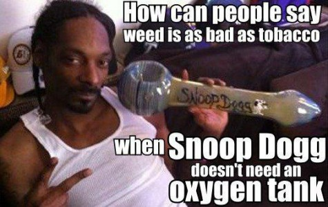 25 Memes That Will Only Be Funny If You're Celebrating 420.