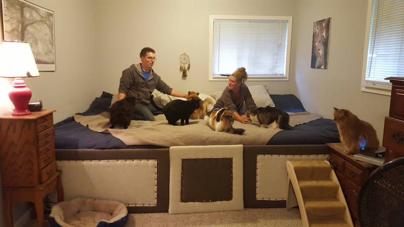 This couple created a 75-foot mega bed to sleep with their pets.