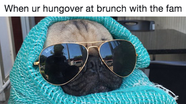 31 memes for people who know brunch is the most important meal of the week.