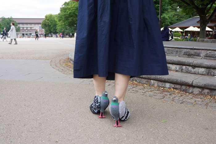 //cdn.someecards.com/posts/pigeon-shoes-japanese-woman-4-7K0p73.jpg