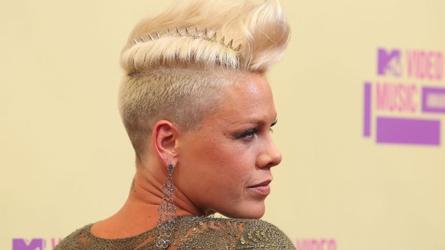 Pink brutally slammed the paparrazzi for accusing her of canceling a concert to go to the beach.
