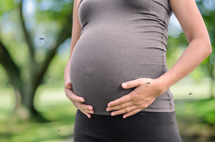 Don't be alarmed, but pregnant women should stay out of Florida right now.