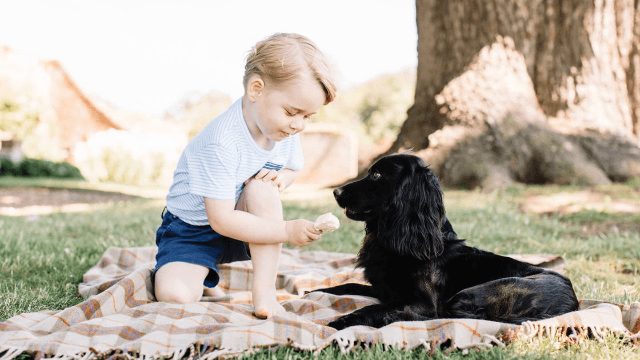 These adorable pics of Prince George's third birthday will make you want a royal baby of your own.