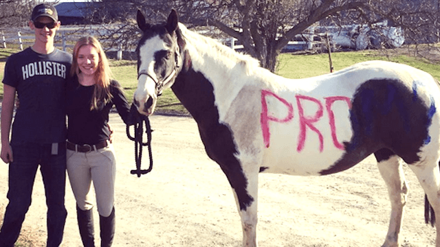 25 of the most ridiculously over-the-top 'promposals' ever.