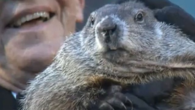 Punxsutawney Phil didn't see his shadow, so this ridiculous tradition is still relevant for now.