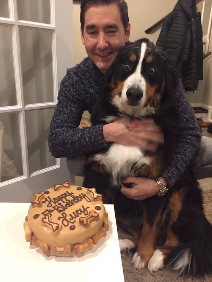Guy buys his dog a birthday cake, captures the greatest reaction shot in history.
