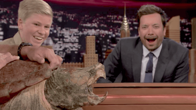 Robert Irwin brought a turtle to the 'Tonight Show.' Jimmy Fallon was terrified.